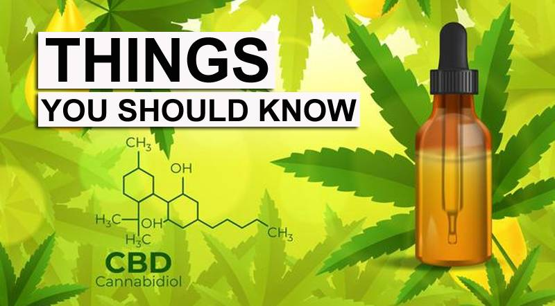 CBD Products Guide